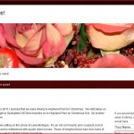 Screen shot of iRoberta.com a personal blog/website.