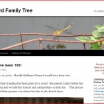 Screen shot of the Winnard Family Tree Website