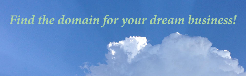 Find the domain for your dream business.